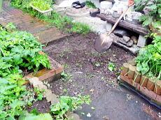 基礎工事前の庭.jpg